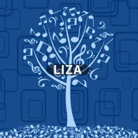 LIZA_Modul